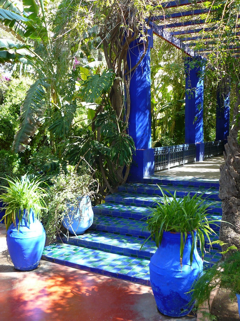 Marrakech 10 photos envo tantes du jardin majorelle for Jardin ysl marrakech