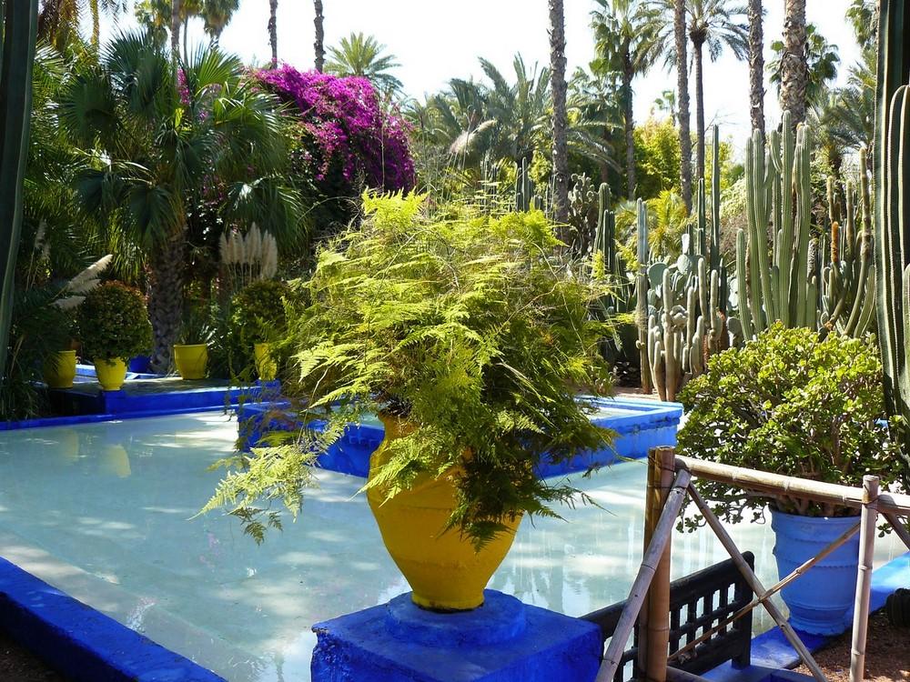 Marrakech 10 photos envo tantes du jardin majorelle - Jardin majorelle prix d entree ...