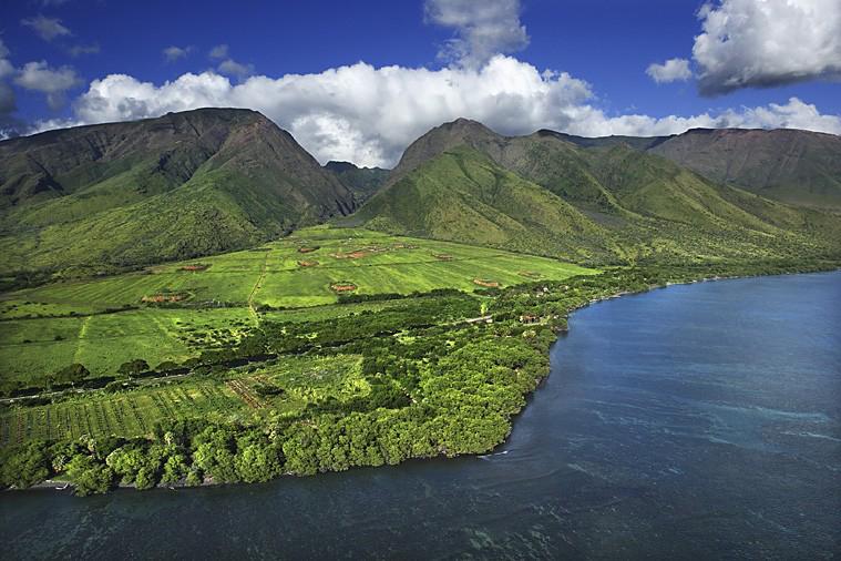 Paysage typique d'Hawaï