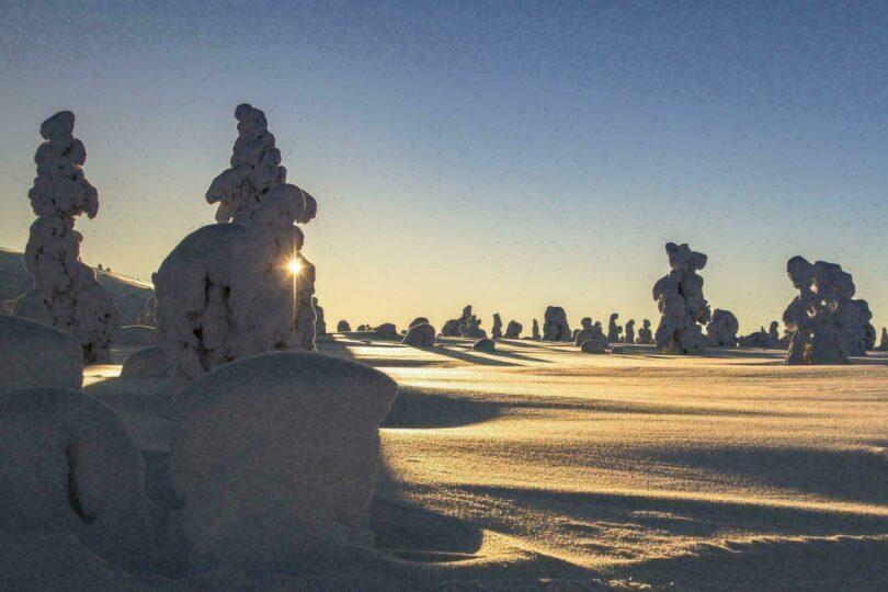 Paysage de Laponie en hiver