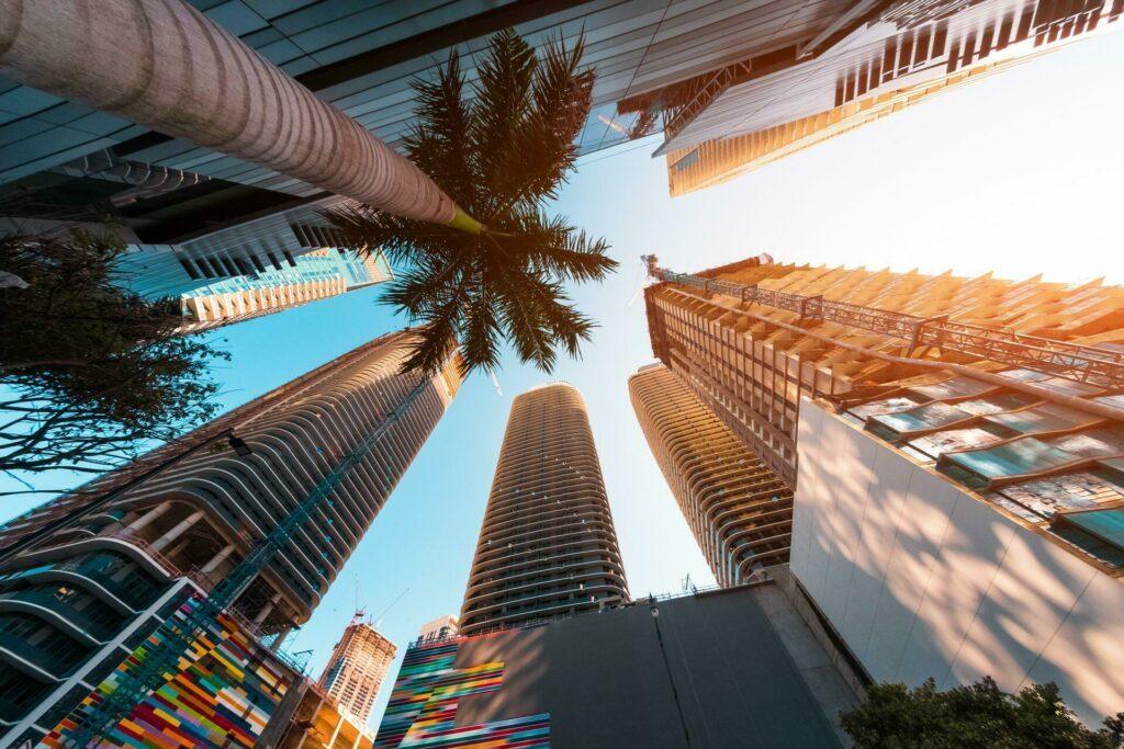 Miami centre ville palmier