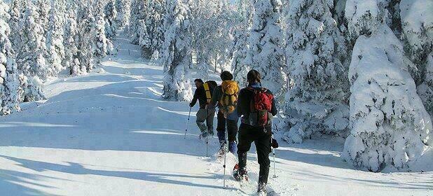 S jours la montagne le ski de fond et la rando aussi blog ok voyage - Vacances en montagne locati architectes ...