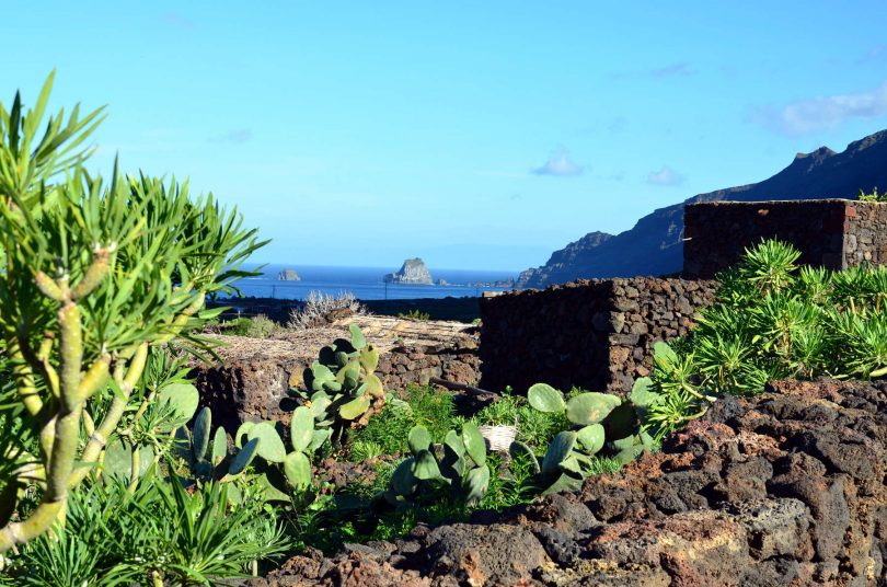 paysage canaries