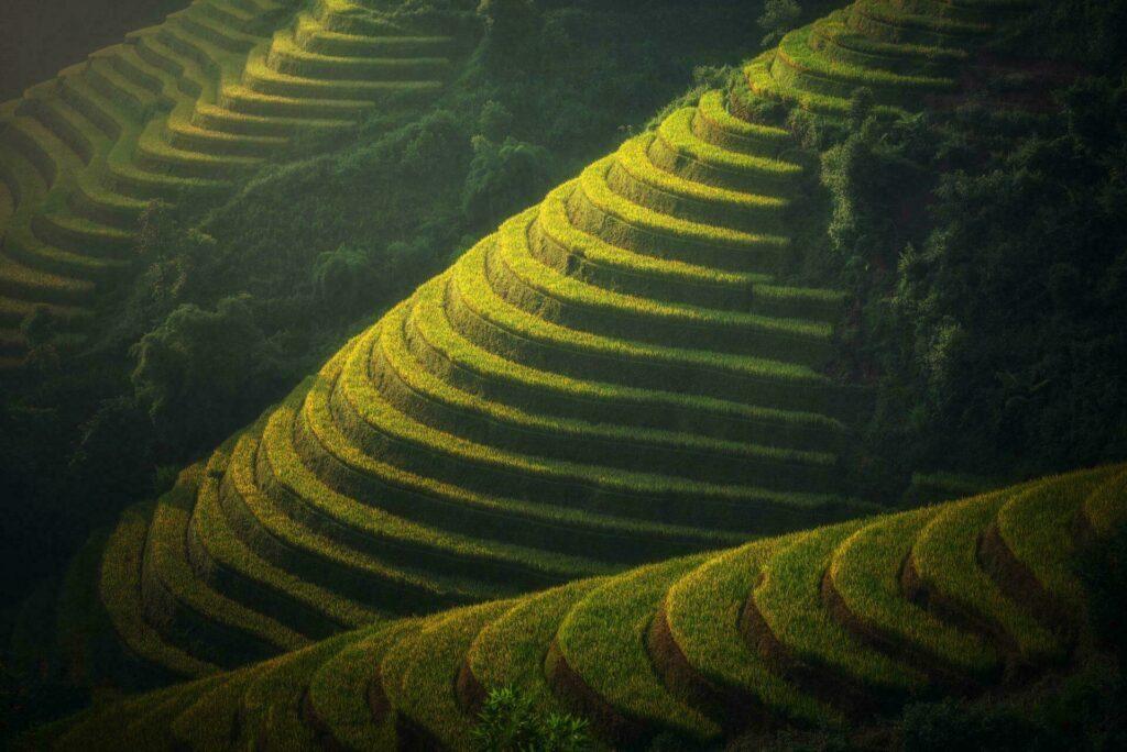 rizieres en terrasses birmanie