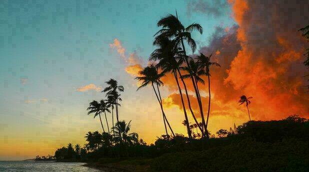 paysage-hawaien