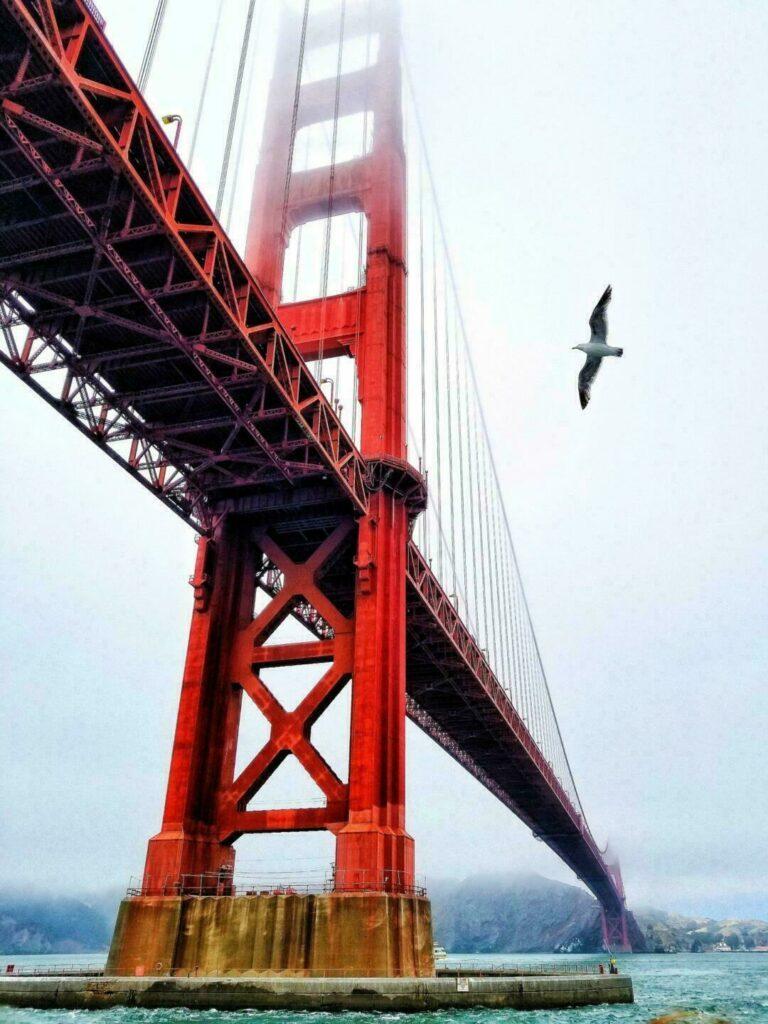 Hauteur du pont : 230 m