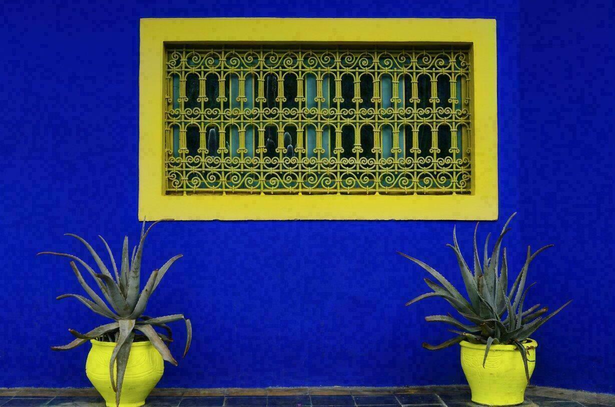 Marrakech 10 photos envo tantes du jardin majorelle for Jardin majorelle 2015