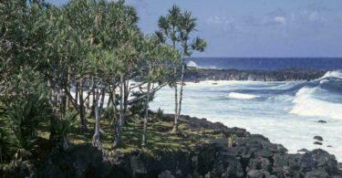 activites-extremes-reunion-lava-beach