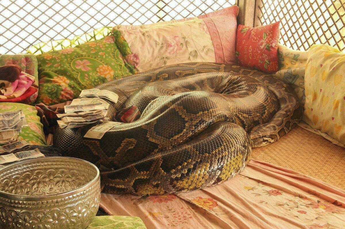 Monastère du Serpent à Bago