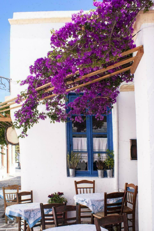 Cyclades, île de Sifnos
