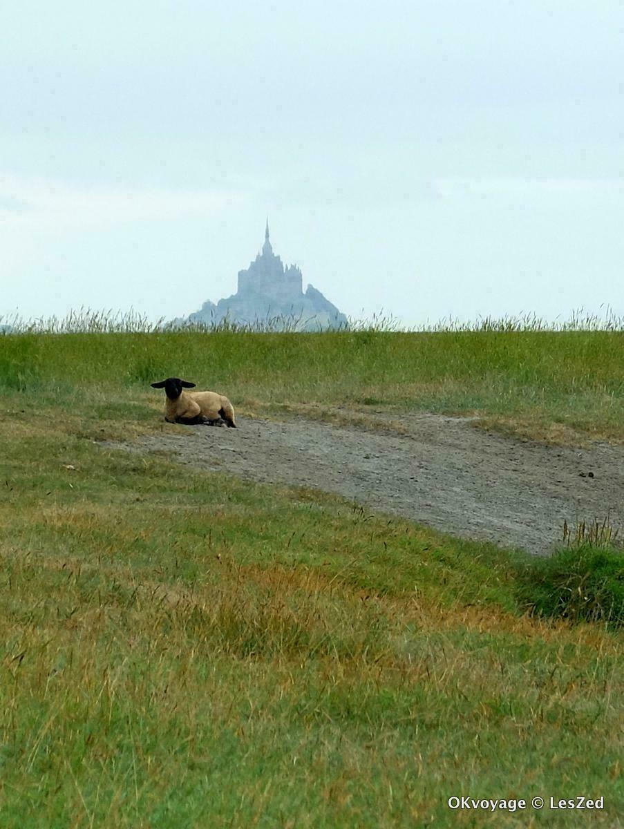 Gué de l'épine / Baie du Mont Saint Michel / Manche - Normandie