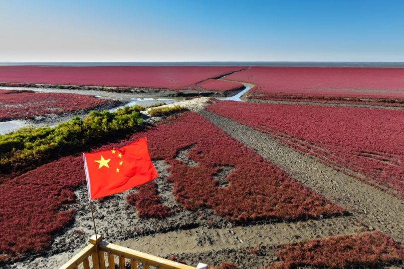 Plage rouge de Panjin en Chine