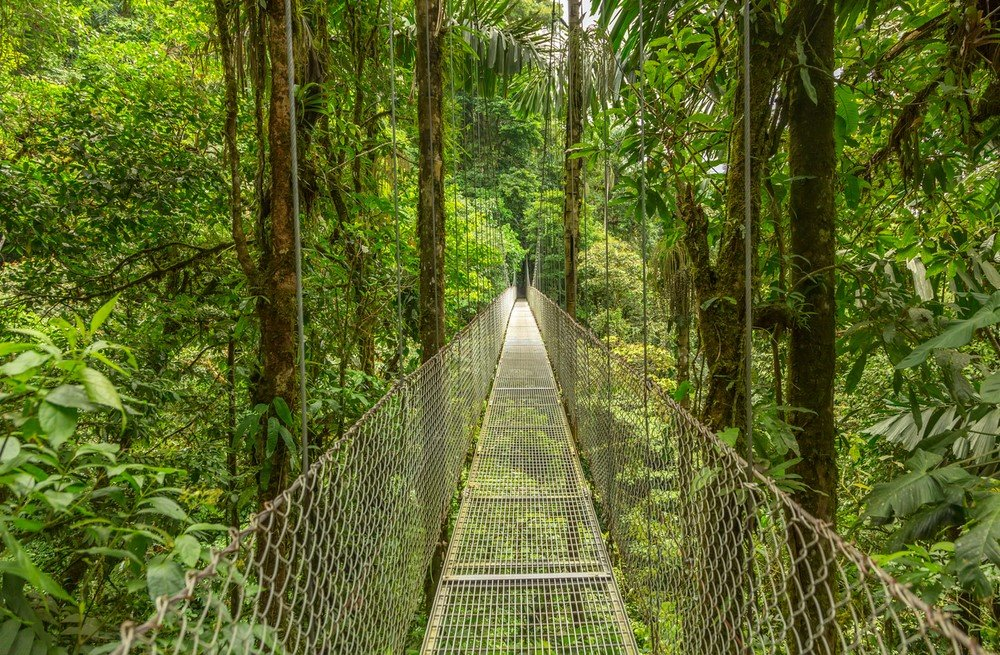Canopée de Monteverde