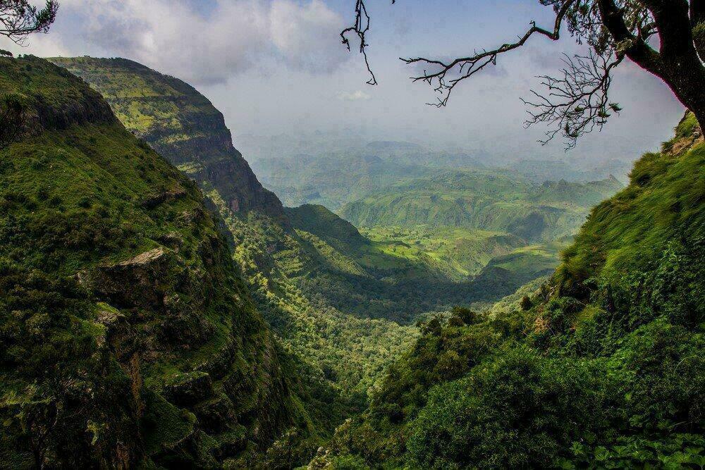 Les montagnes vertes du Simien