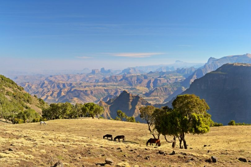 Panorama dans le parc national du Simien