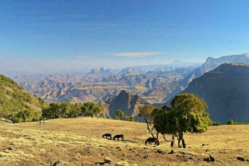 ethiopie-voyage