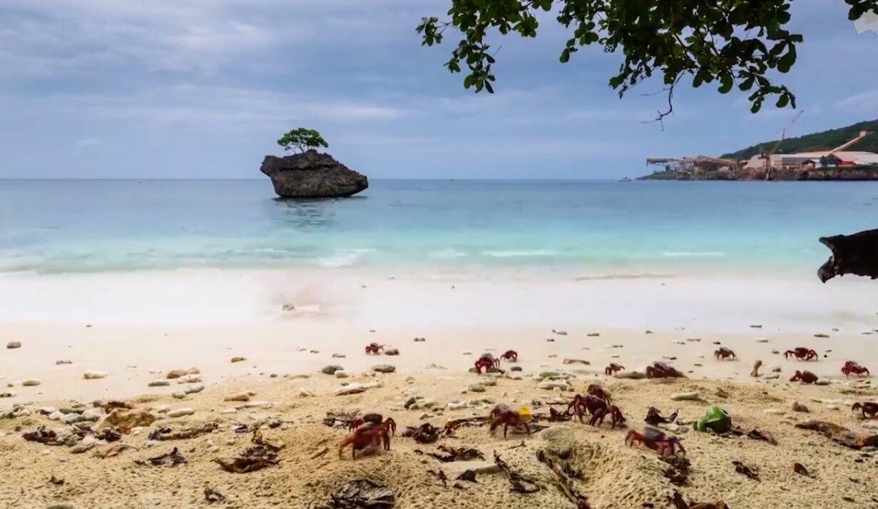Bienvenue sur l'île Christmas