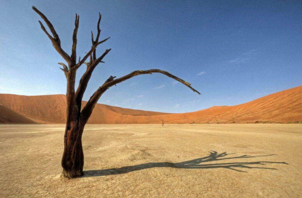 Dunes et désert en Namibie