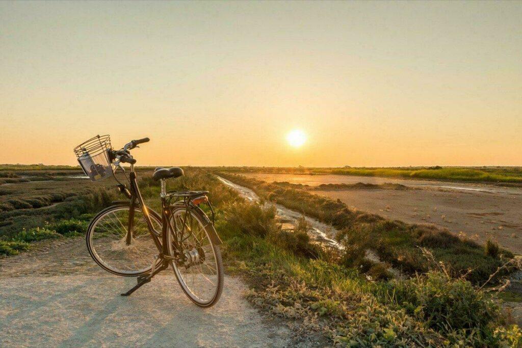 L'île de Ré, paradis de vélos