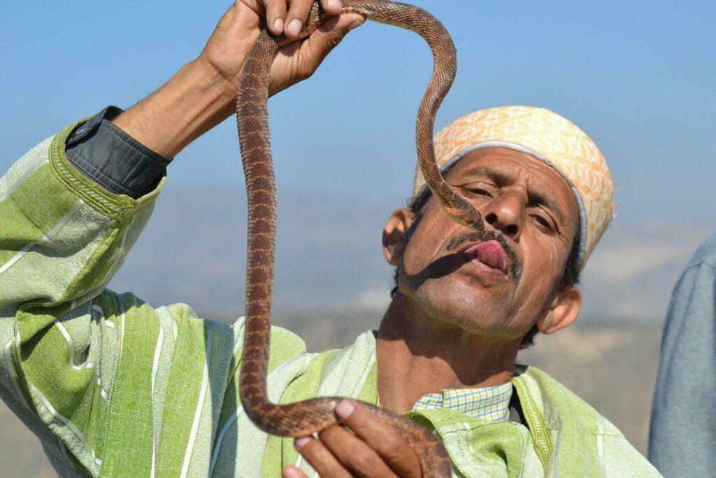 Charmeur de serpent au Maroc