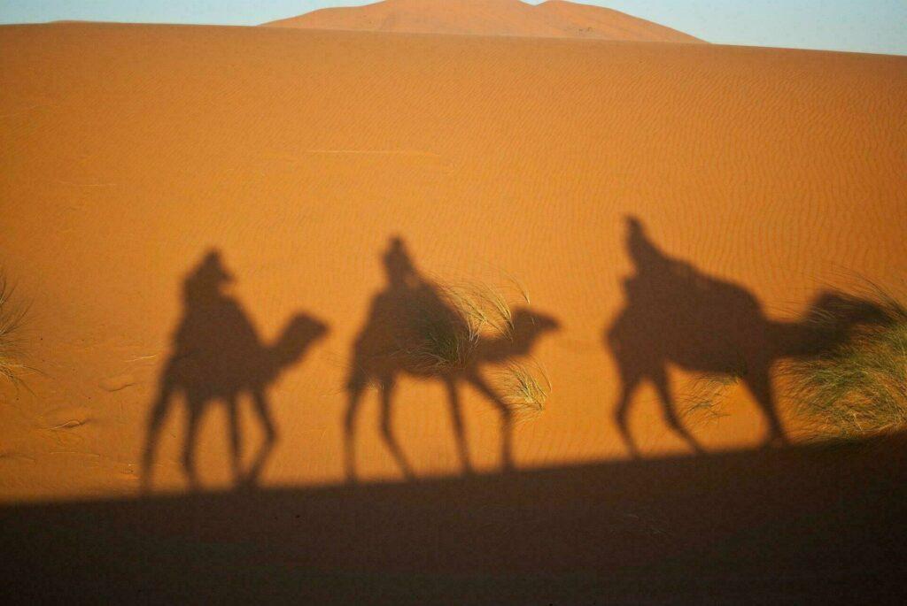 Escapade en famille à dos de chameau