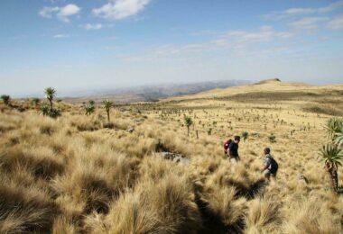 Trek en Ethiopie