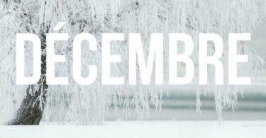 Où partir en décembre