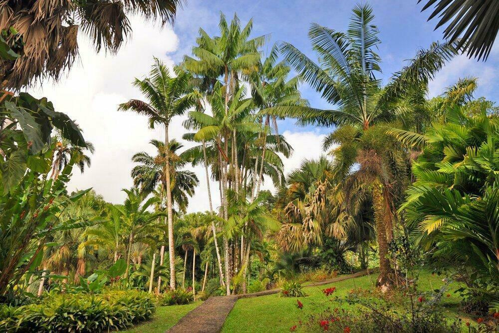 jardin valombreuse