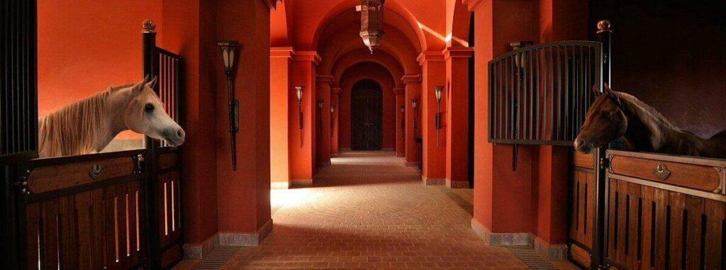 Haras Selman Marrakech