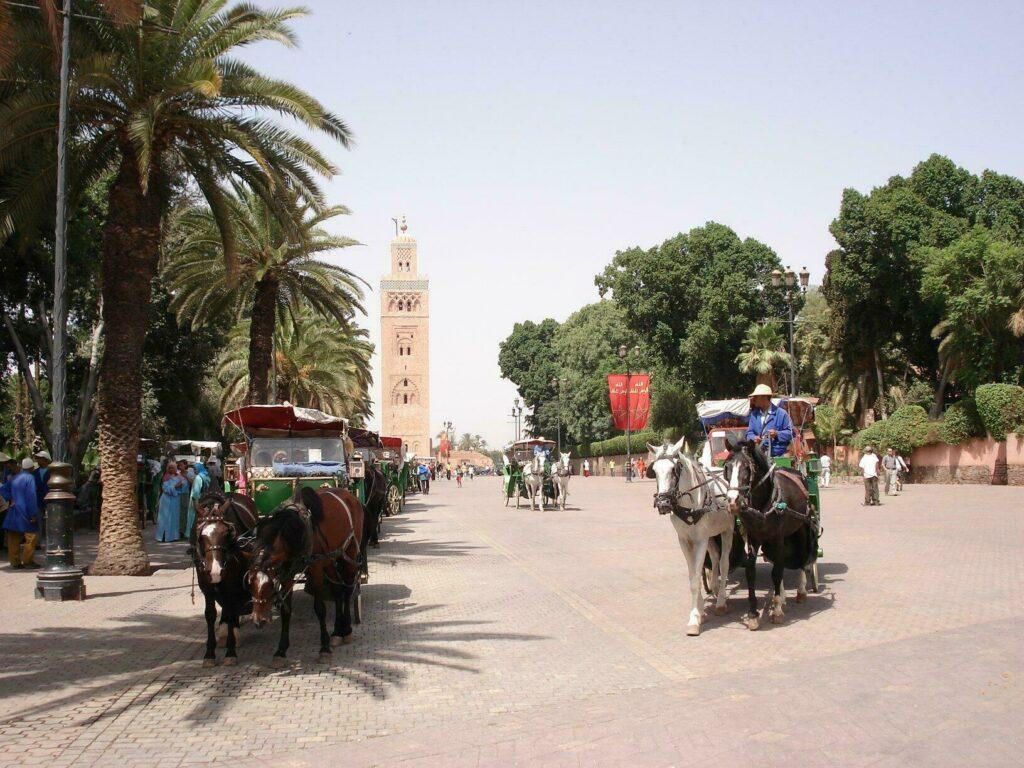 calèches Marrakech