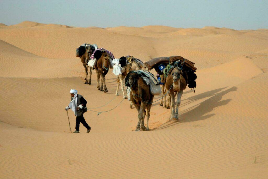 culture tunisienne