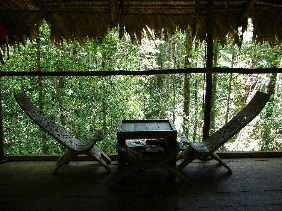 camp canopée