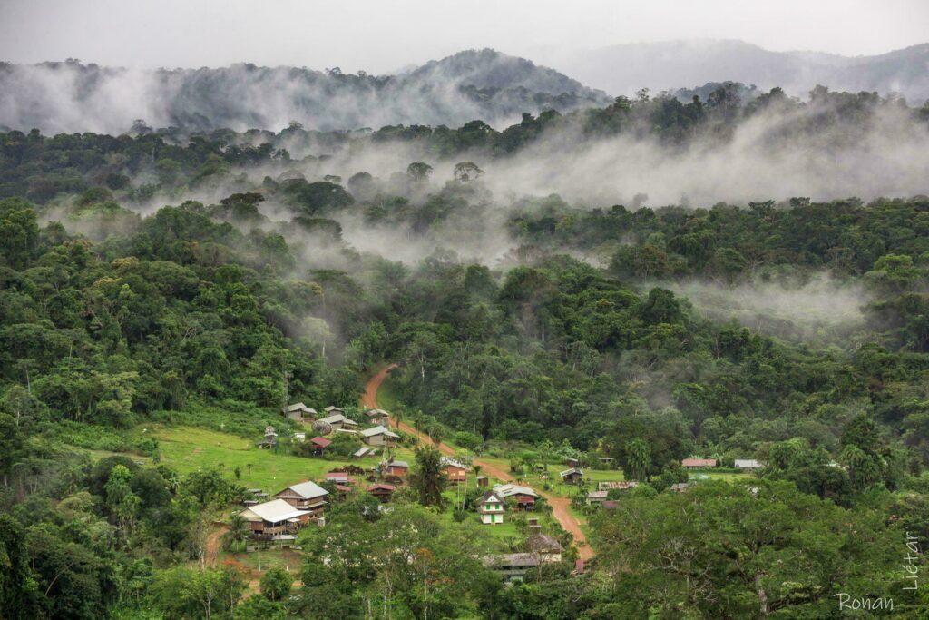 Saül Guyane