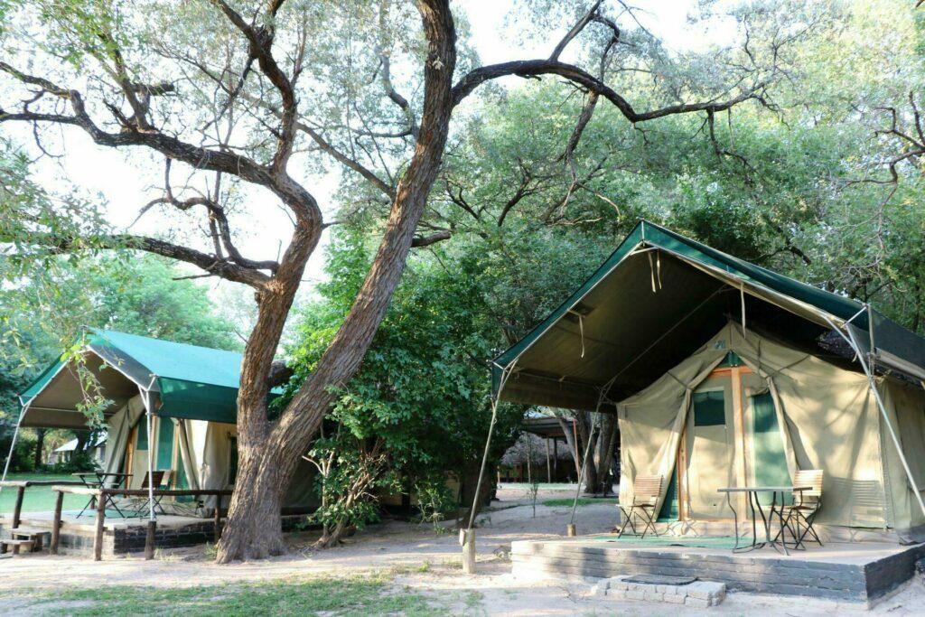 camp safari