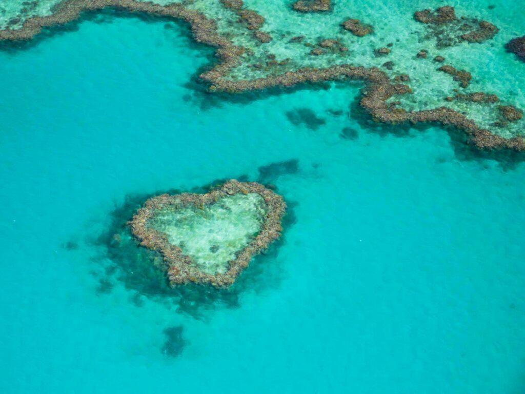 grande barrière corail