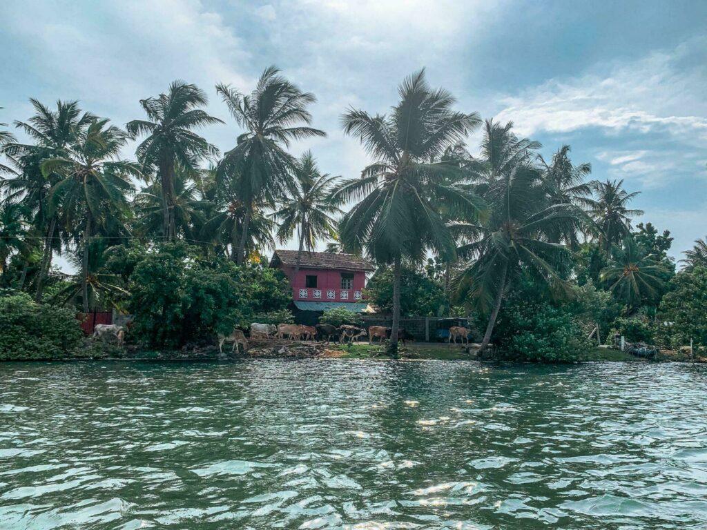 Sri Lanka Batticaloa