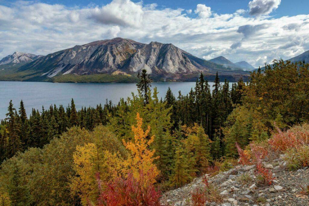 La beauté du Yukon