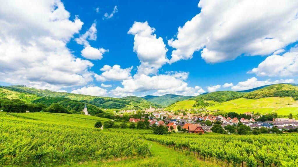Route des vins autour de Strasbourg