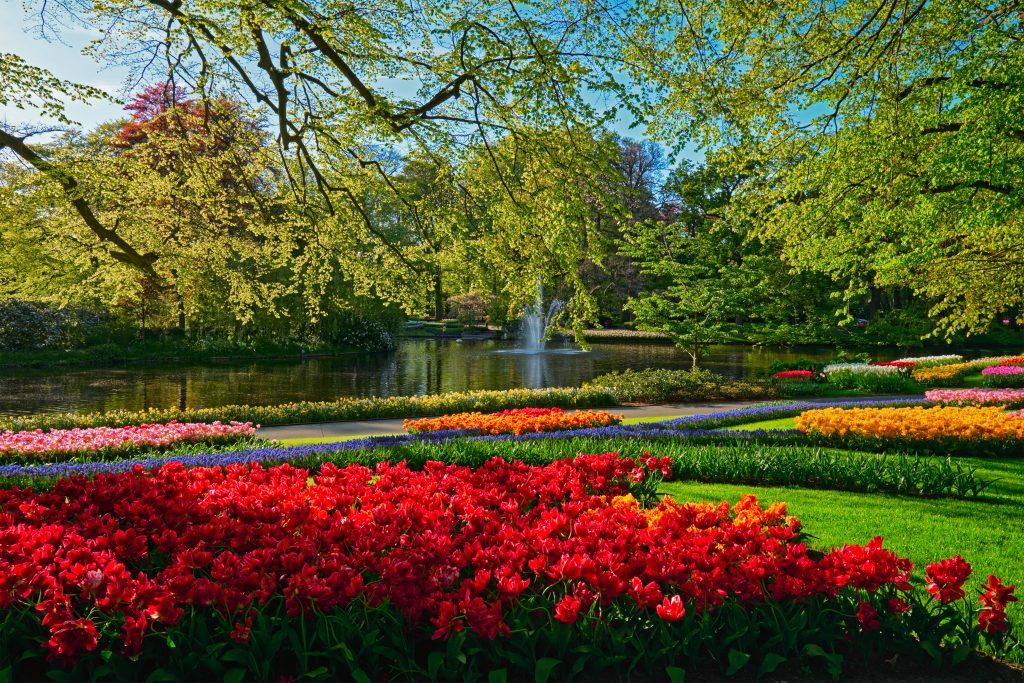 jardin Keukenhof Pays-Bas