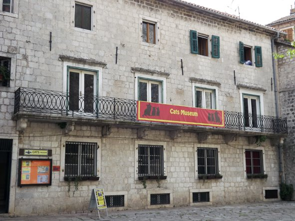 musée du chat