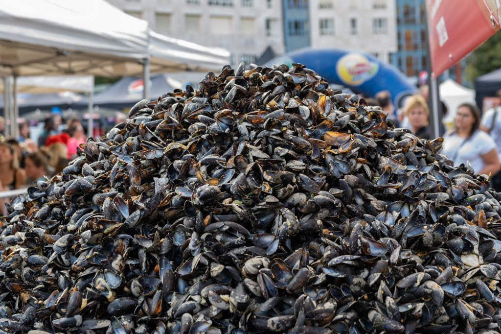 moules Braderie Lille
