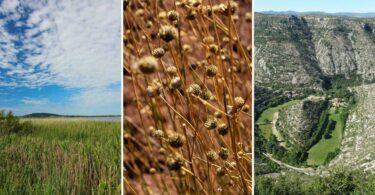 Découvrez l'Hérault nature