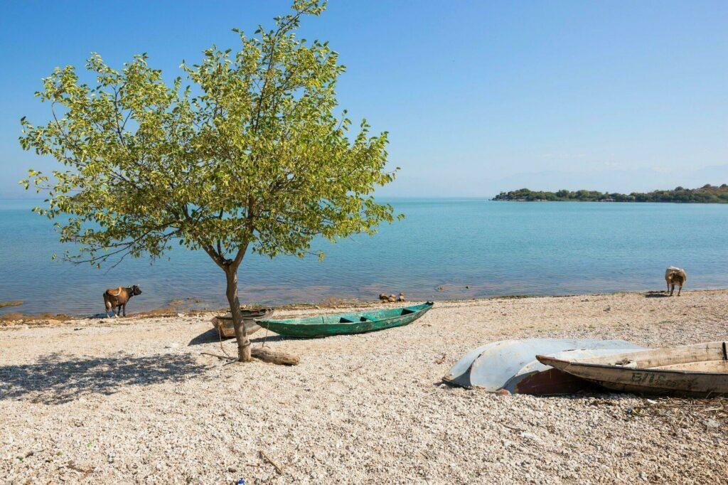 plage de Murici