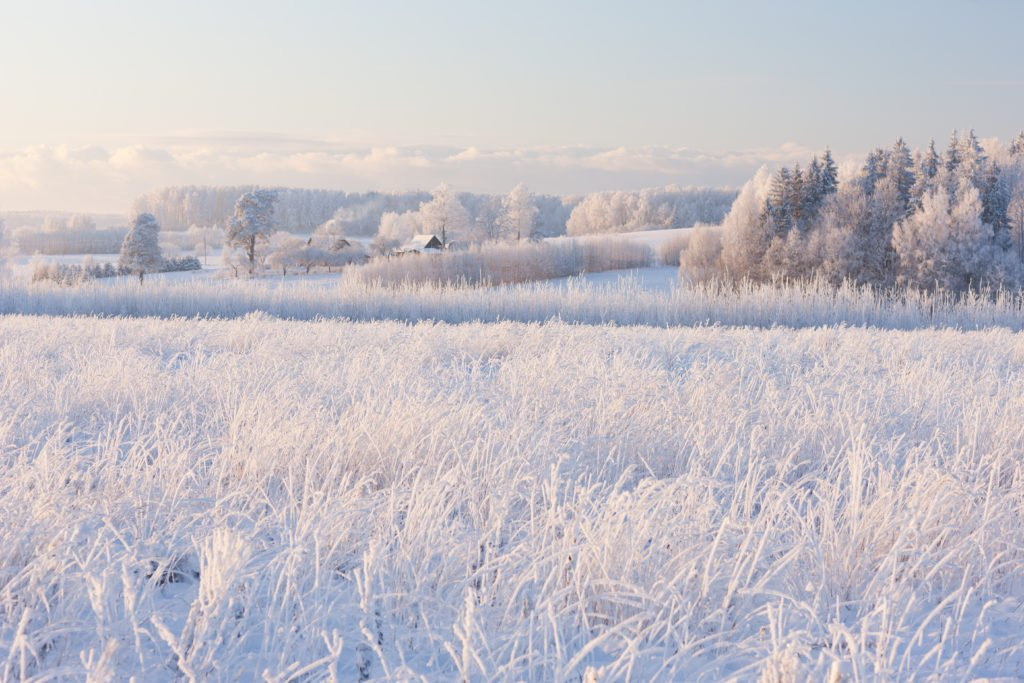 Lettonie en hiver