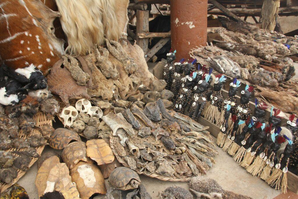 marché Vaudou de Togo