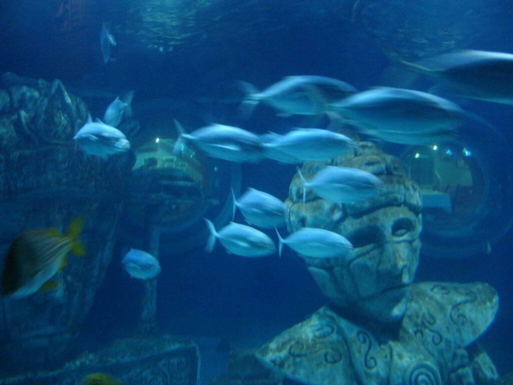 Sea Life Paris