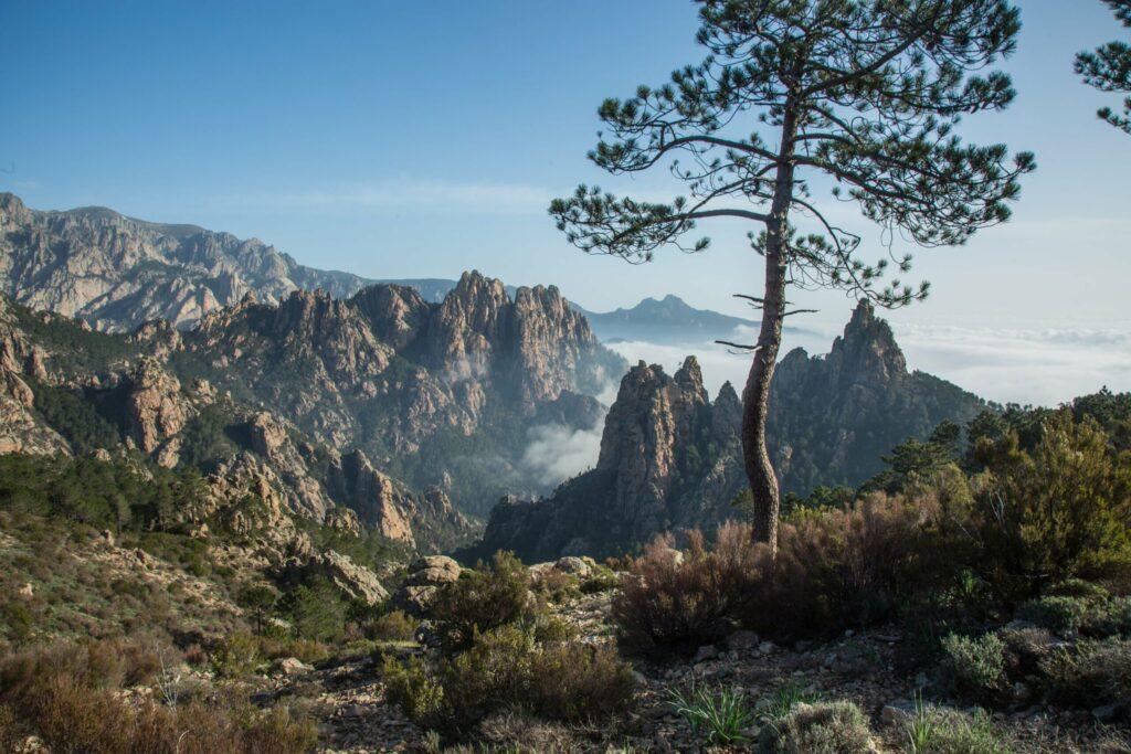 Corse montagne nature en France