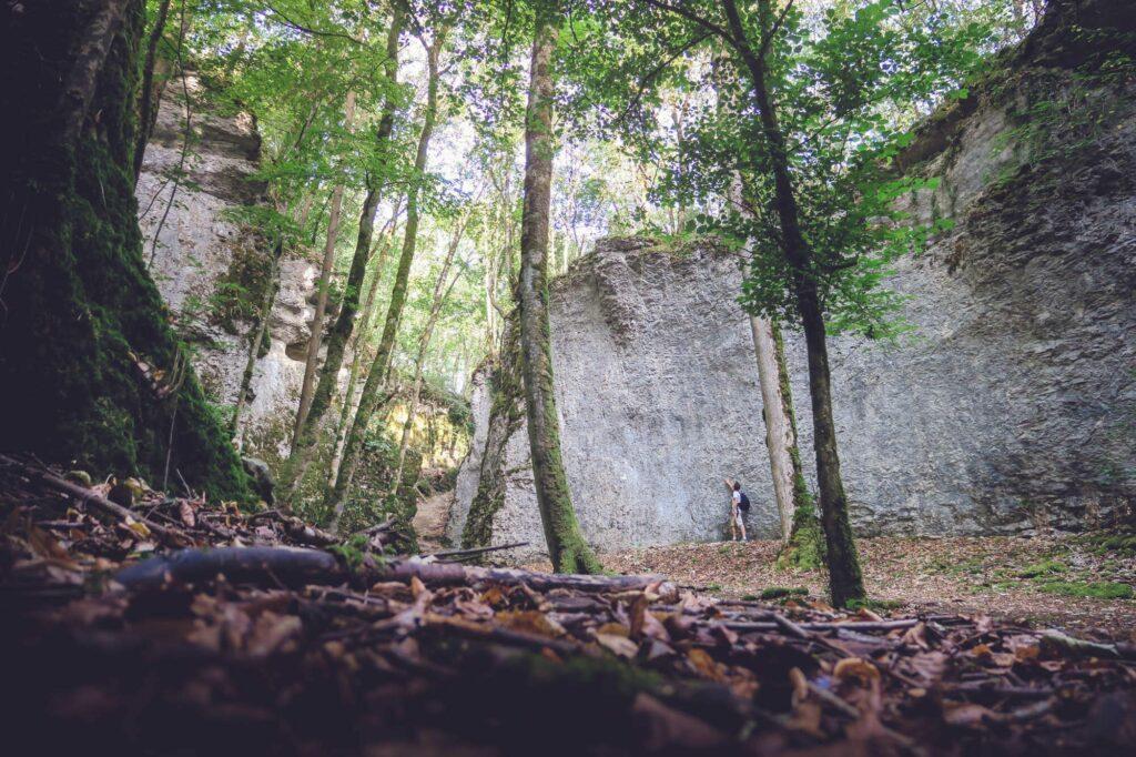 Au coeur des forêts de la Haute-Marne