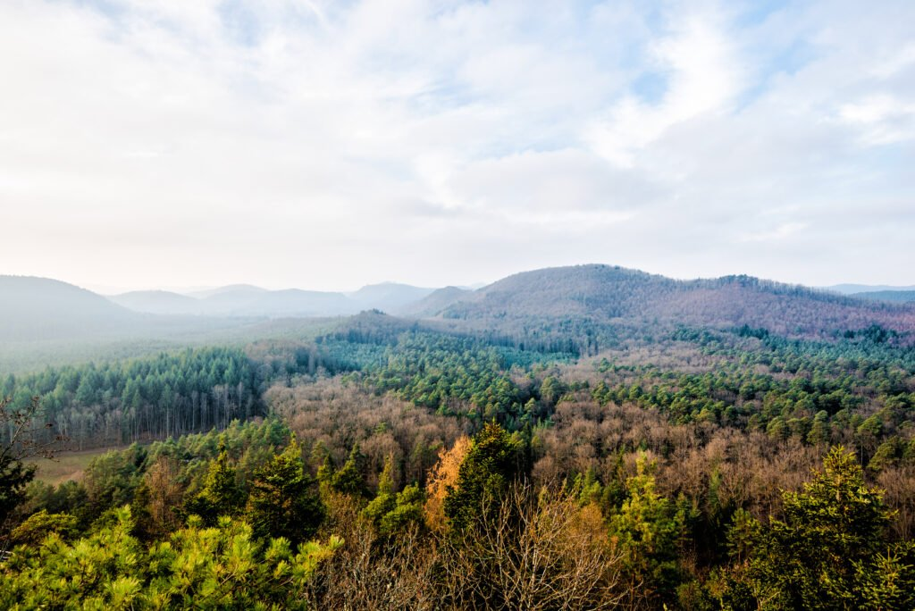 Parc naturel régional des Vosges du Nord