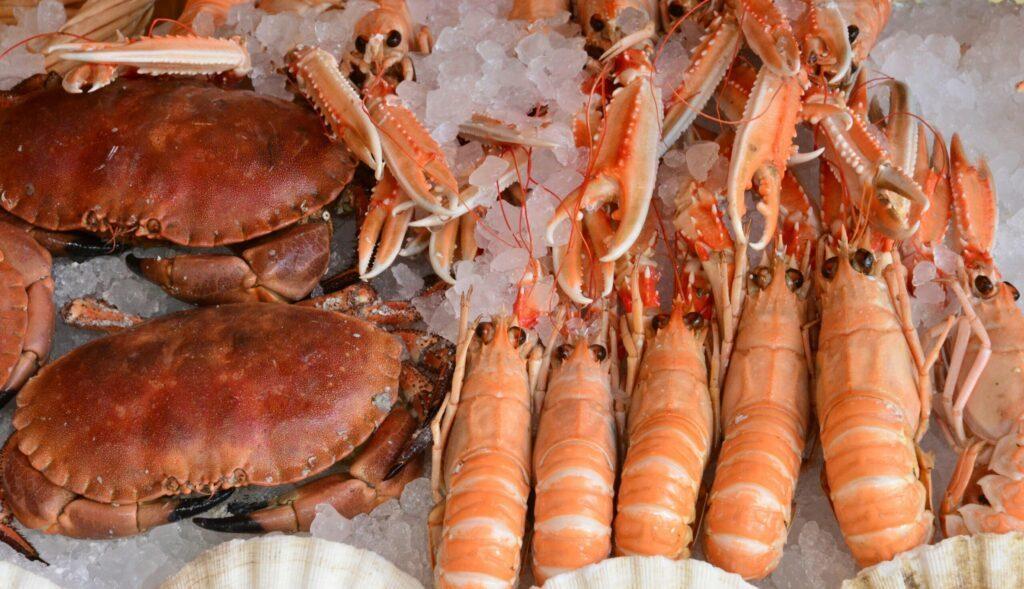 Crustacés Calais